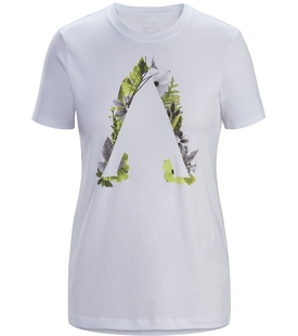 Футболка Arcteryx Forage T-Shirt SS W