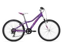Велосипед Giant Areva 2 24